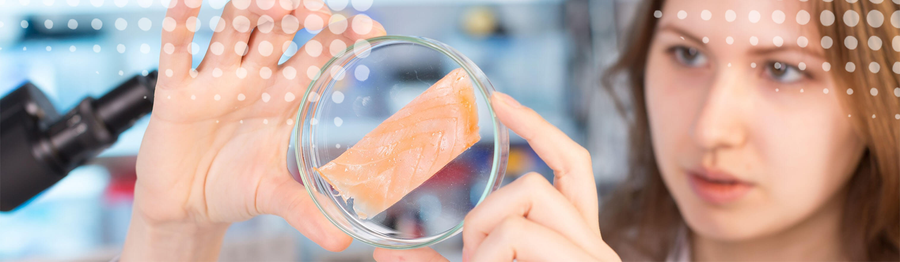 Food Safety Testing Slider - Woman examines fish sample in petri dish
